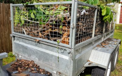 Cage Trailer and Ute hire: Prepare Your Home